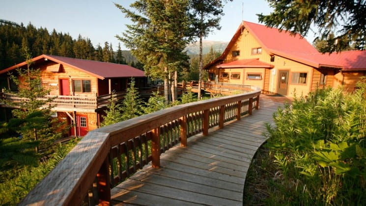 Boardwalks connect to guest cabins and through tall pine trees at the Tutka Bay Wilderness Lodge in Alaska