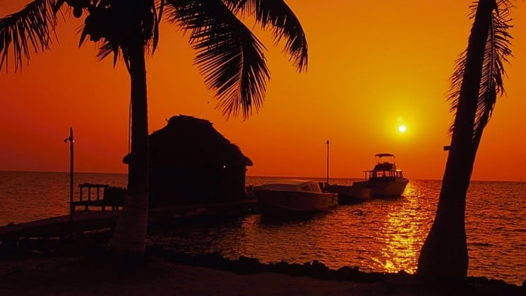 An orange sunset silhouettes a palm tree and an oceanfront cabana at the Blackbird Caye Resort in Belize