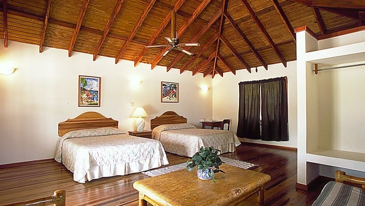 The interior of a cabana at the Blackbird Caye Resort in Belize, with two queen beds, a ceiling fan, and a table with a green plant