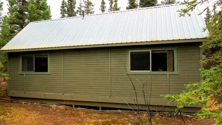 Back view of guest cabin surrounded by trees at Denali Education Center in Alaska
