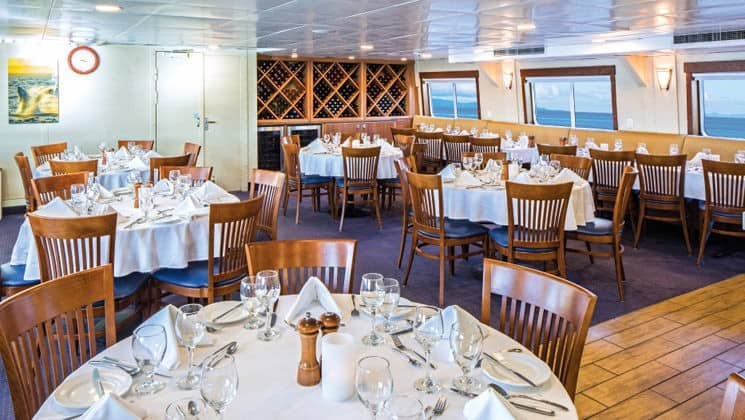National Geographic Sea Lion dining room set for a meal with round tables and chairs and picture windows.
