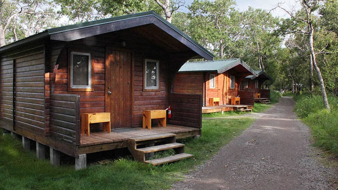 Rustic lakefront cabins line a dirt path with trees at the Brooks Lodge in Alaska