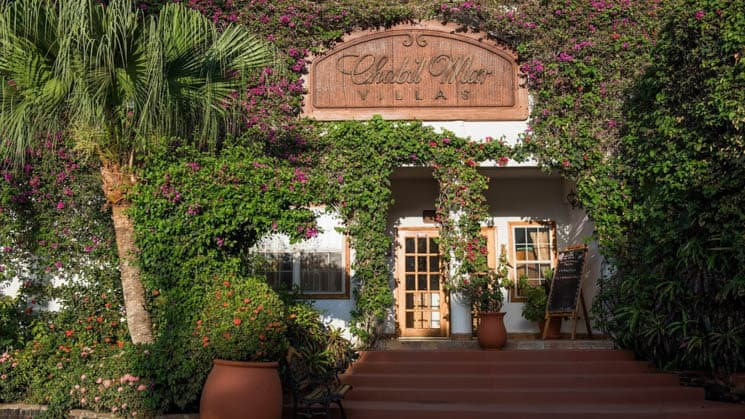The front door of Chabil Mar Villas is surrounded by hanging flowers and enchanting local plants in Belize