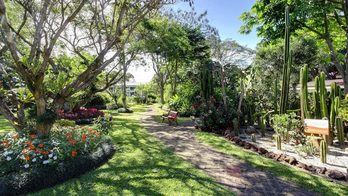 Garden walkway with trees, flowers and cacti outside Hotel Bougainvillea near San Jose, Costa Rica