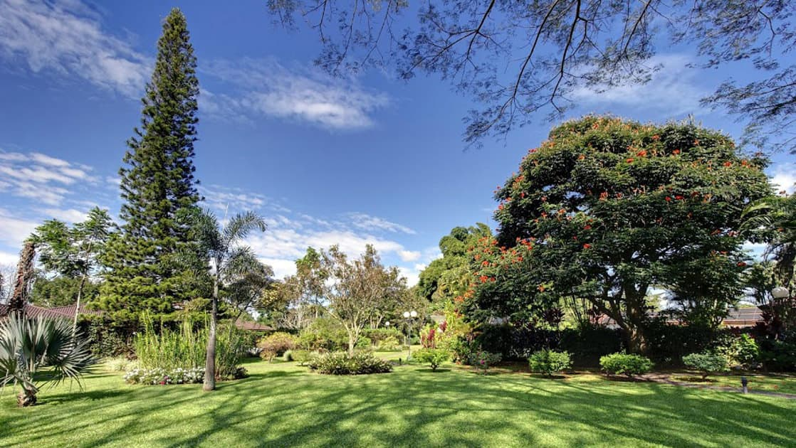 Lawn and garden with trees and plants outside Hotel Bougainvillea near San Jose, Costa Rica