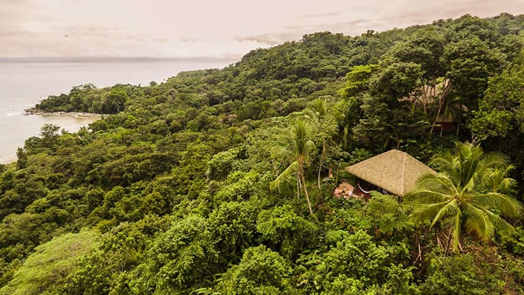 The lodge tucked in the jungle over looking the ocean.