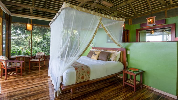 A bed in Lapa Rios Eco Lodge with a mosquito net and green walls.