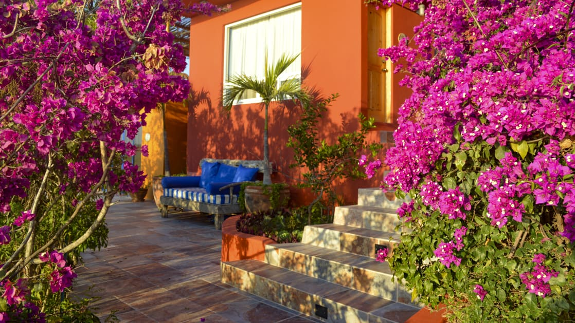 Flowers adorn the orange adobe walls and tiled floor at the patio of a private condo at the boutique Baja hotel Los Colibris Casitas