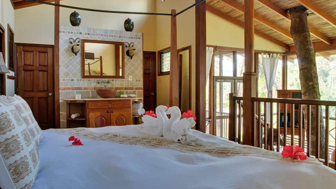 Large bed topped with fresh flowers and decorative towels in large, window-filled room with a tree growing through main living space in riverview room at Caves Branch Jungle Lodge in Belize