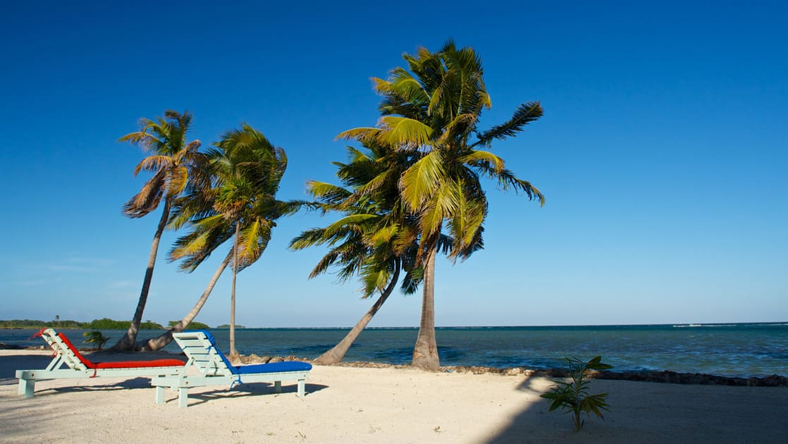 Palm trees and two lounge beach chairs make an idyllic beach setting just out front of the Blackbird Caye Resort in Belize