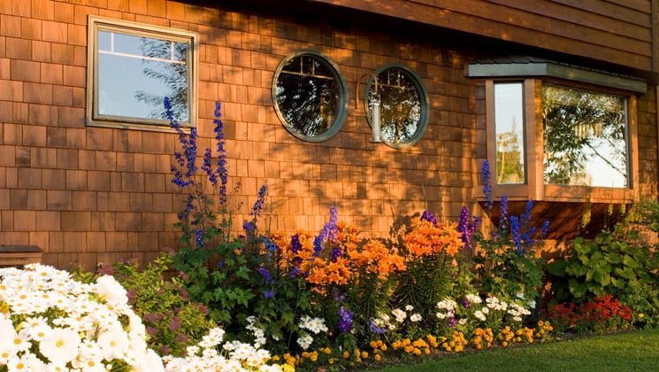 Colorful flowers bloom in a garden bed just outside the shingled wall of the Parkside Guest House, a bed-and-breakfast in Anchorage, Alaska