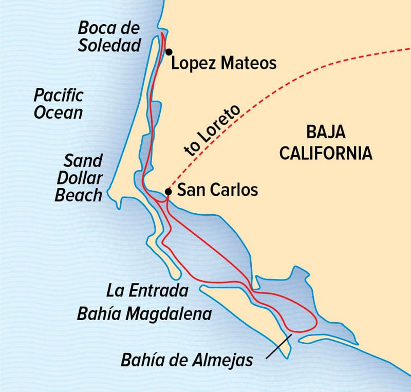 Whales of Magdalena Bay cruise route map.