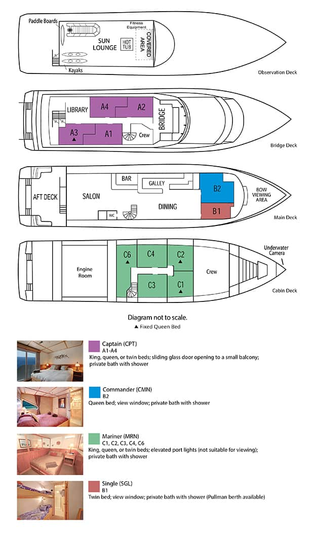 safari quest alaska small ship deck plan with 4 renderings and a list of room types