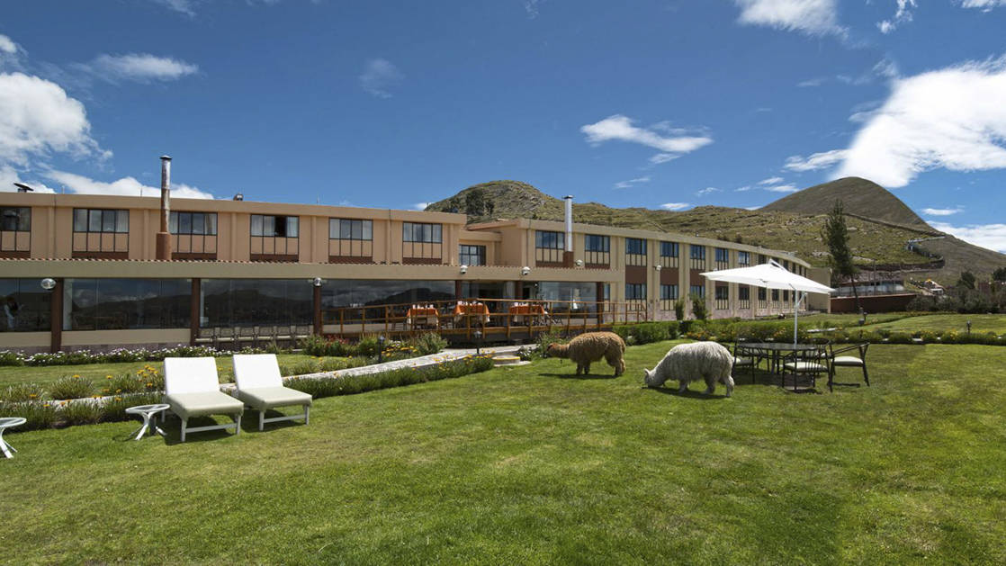 Llamas and white lawn chairs on green grass in front of Sonesta Posada del Inca Lake Tiiticaca, a traditional hotel in the Andes