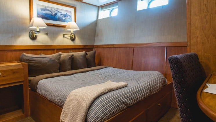 cabin with a large bed and a row of pillows on it, a picture above it and windows at the top aboard the Safari Quest pacific northwest small ship