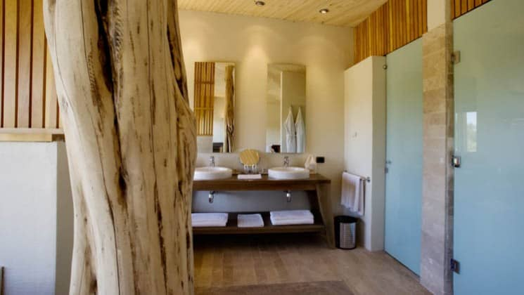 A tree grows through the room in the Catur Suite, with twin sinks in the background at Explora Atacama Lodge in Chile