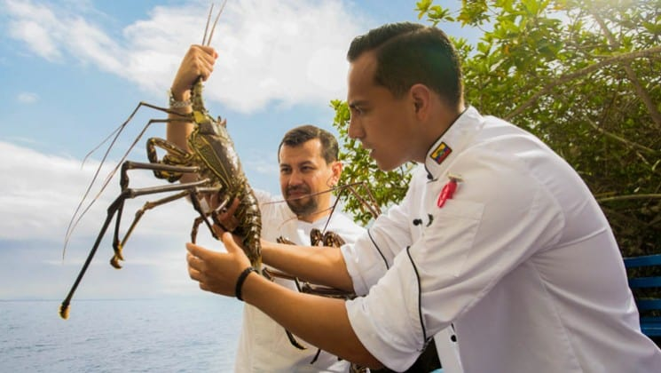 Two chefs hold a large lobster near the ocean at Finch Bay Eco Hotel in the Galapagos Islands