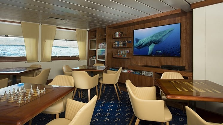 a room with various tables and chairs, a large picture of a whale shark and 2 large windows aboard the Santa Cruz II Galapagos small ship