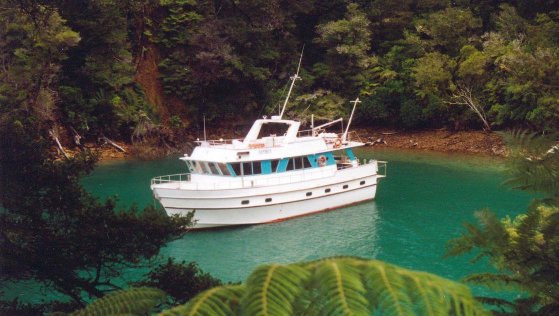The Affinity in a blue-green cove in New Zealand surrounded by foliage.
