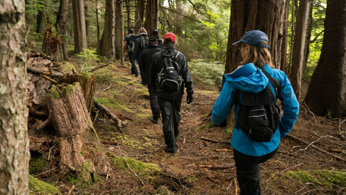Guests enjoying a hike in the green and brown forest of Southeast Alaska, a shore excursion while on an Alaska small ship cruise