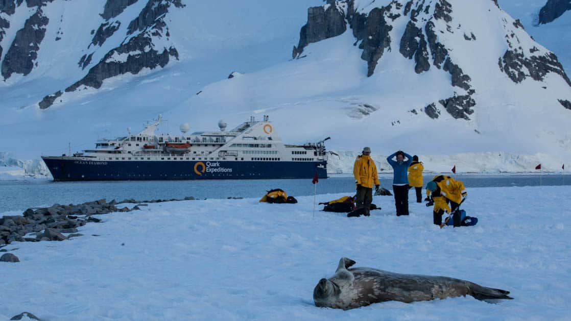 Ocean Diamond ship with travelers and a seal in the foreground standing on ice