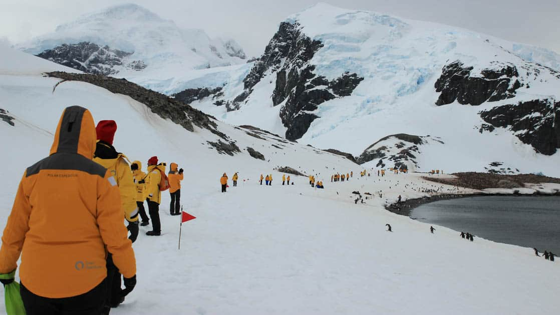 Group walking along the snow on the shore on an Antarctica fly the drake cruise
