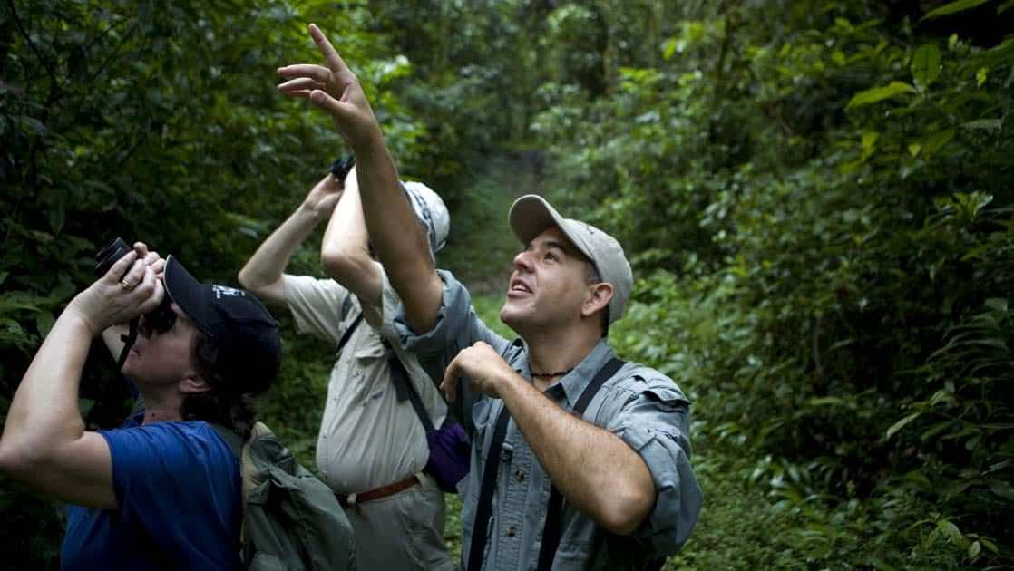 travelers with binoculars look and point upwards in the jungle on the best of panama land tour