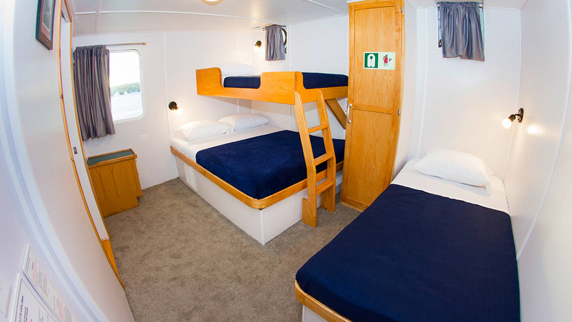 Cabin 1 aboard Cachalote Explorer with three beds and window.