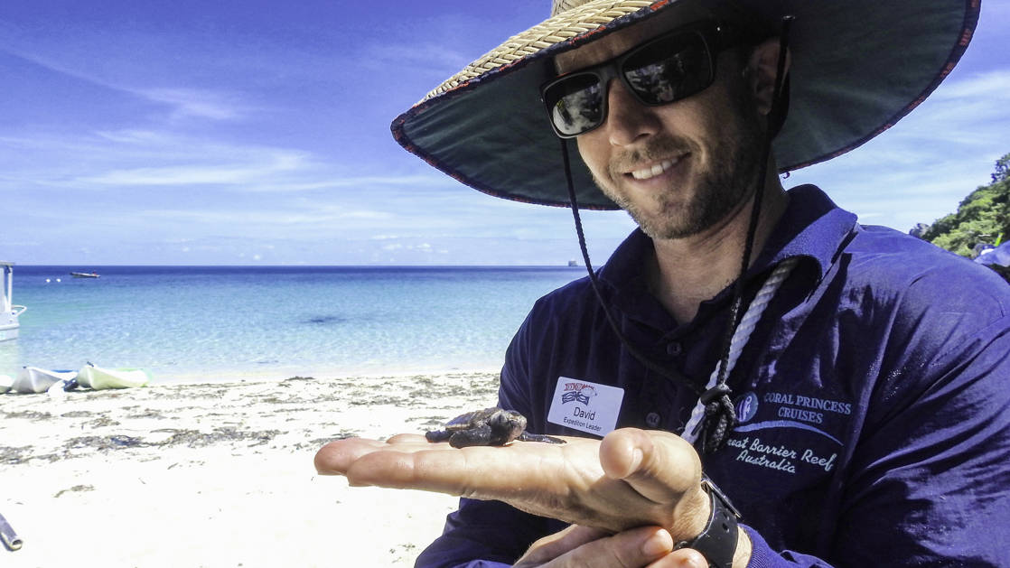 an australian guide wearing a blue shirt and hat smiles and holds a baby turtle in his hand