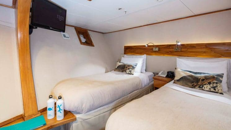 Standard cabin with twin beds aboard Coral I and Coral II