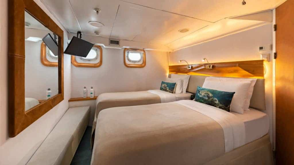 Standard Plus cabin with twin beds aboard Coral I and Coral II