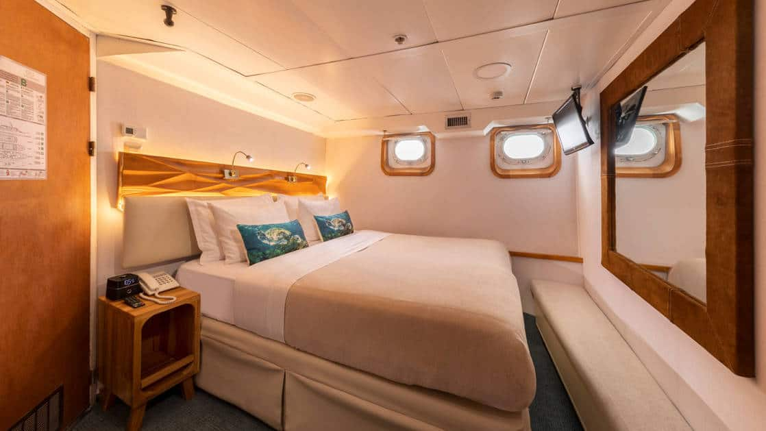 Standard plus cabin with a double bed, bench, TV and two portholes aboard Coral I & Coral II yachts in the Galapagos Islands