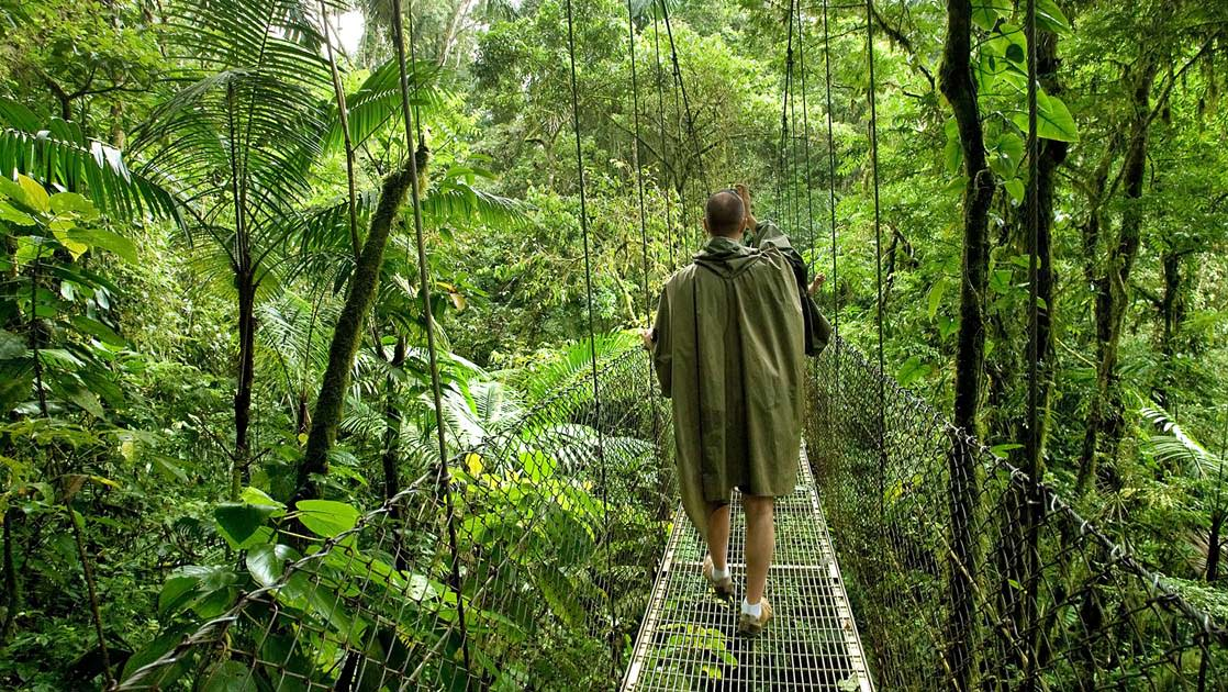 traveler walking on a sky bridge in the jungle canopy on the Crossing the Panama Canal: Treasures of Costa Rica cruise trip