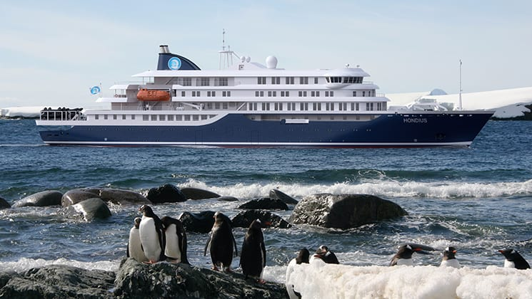 Hondius exterior anchored in Antarctica with penguins on the shore.