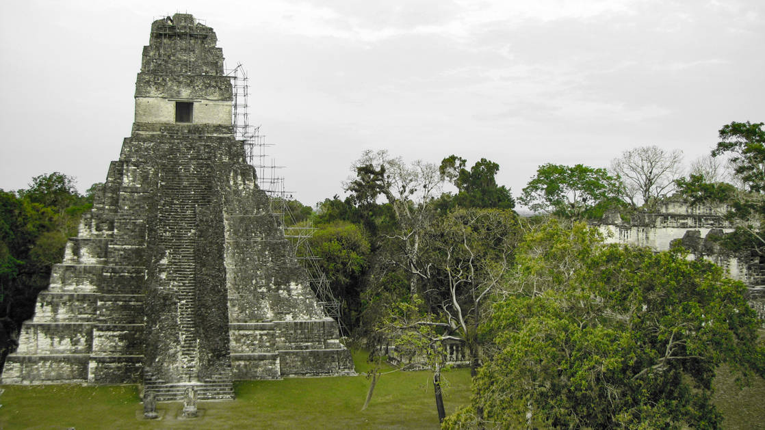 A tall pyramid in Tikal with a room at the top.