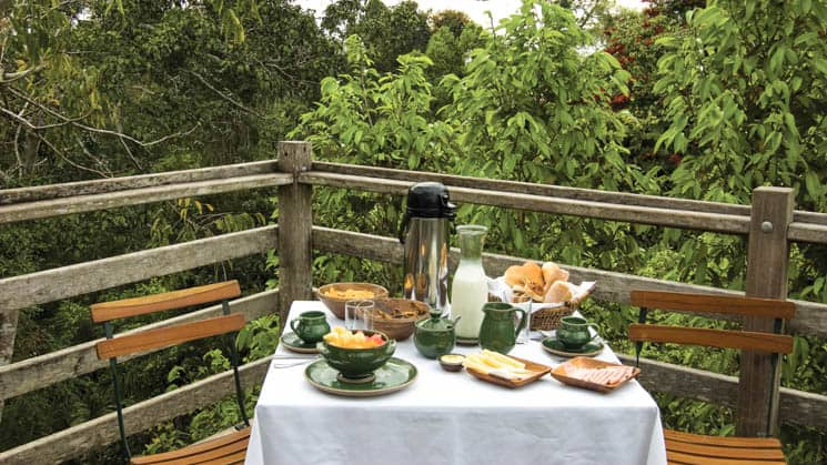 Coffee, bread, and fruit are served on a white linen tablecloth with green ceramic mugs on the private patio of the Canopy Tree House at Inkaterra Reserva Amazonica, an eco-luxury lodge.