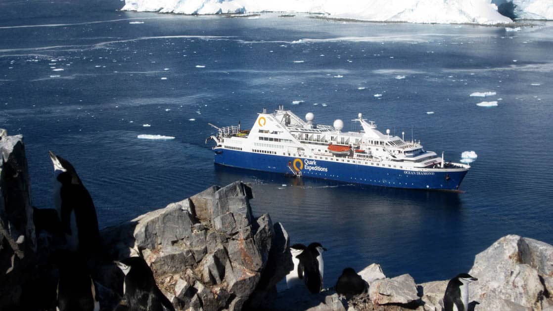 Ocean Diamond ship on a sunny day with penguins in the foreground