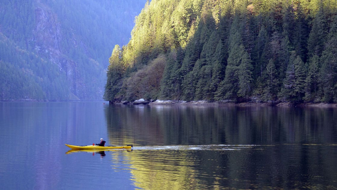 adventure traveler in a yellow kayak paddling on flat water during the Olympic Wilderness & San Juan Islands pacific northwest small ship cruise