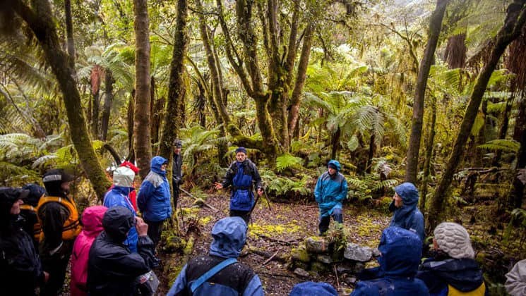 a group of adventure travelers stands in a circle and listens to a guide in the new zealand forest on a stop of the preservation inlet discovery cruise