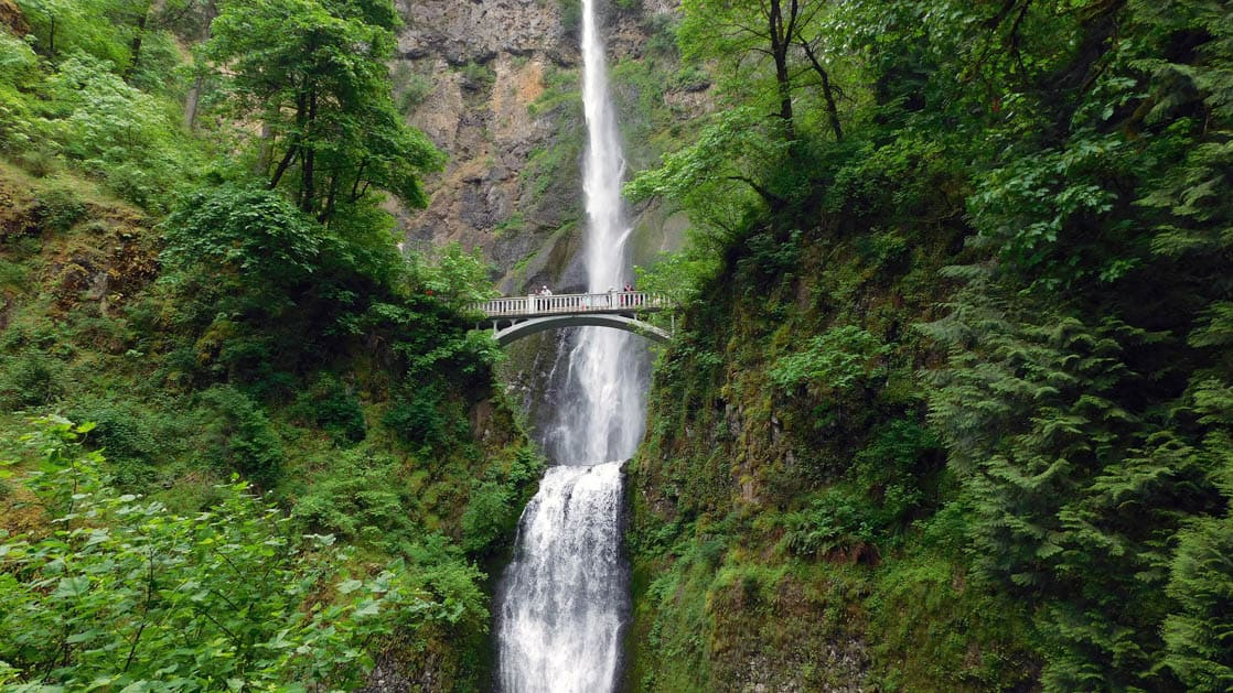 rivers of adventure small ship cruise adventure travelers standing on a bridge overlooking multnomah falls with lush foliage all around them