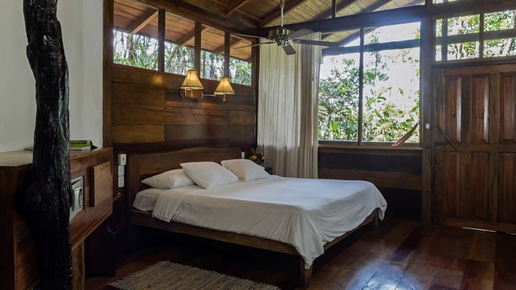 A room with a queen bed and large windows for wildlife viewing. A stay at the sustainable Sacha Lodge in the Ecuadorian Amazon is designed around living with nature.