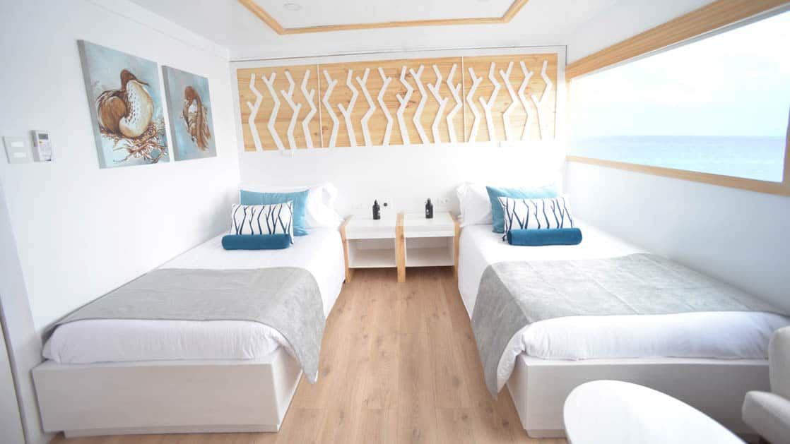 Two twin beds aboard Sea Star Galapagos small ship with natural light flowing in from window.