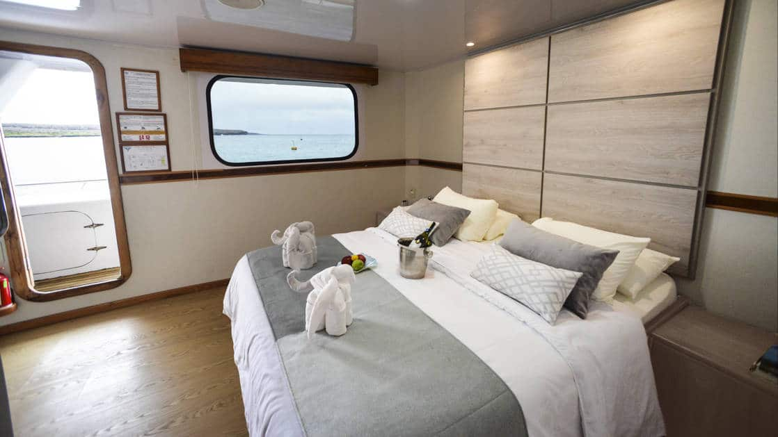 Large bed and large window in Upper Deck Suite aboard the Seaman Journey catamaran in the Galapagos Islands