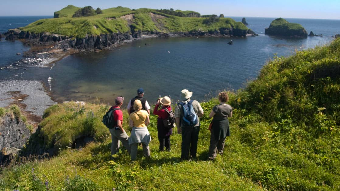 Group of small ship passengers stopped at a viewpoint on a hike in kodiak and looking for wildlife and birds with their binoculars