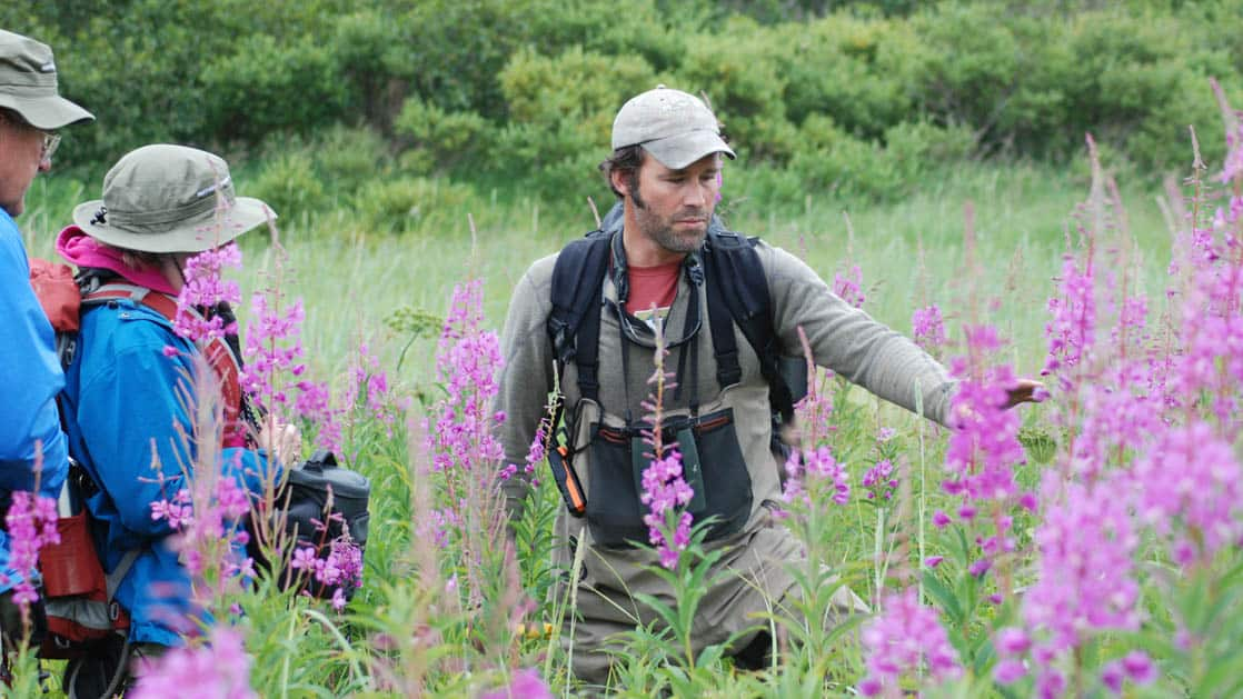 A guide pointing out purple flowers on a hike to a couple from a small ship.