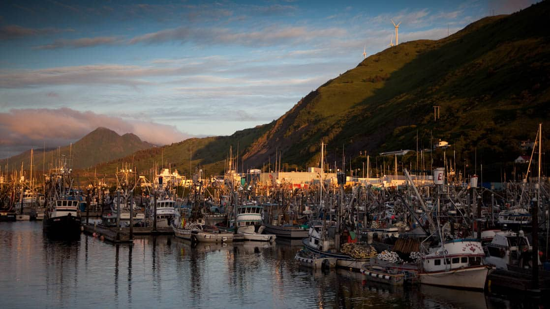 A harbor in alaska with many small ships during the evening.