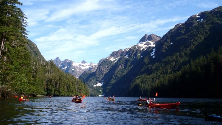 small ship cruise passengers kayaking in an alaskan inlet with mountains on either side on a sunny day