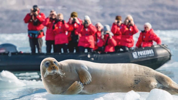 photographers on a zodiac nearby seal on ice in arctic waters