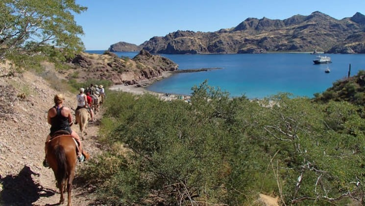 horseback riders on trail beside bay where baja's bounty small ship cruise is anchored
