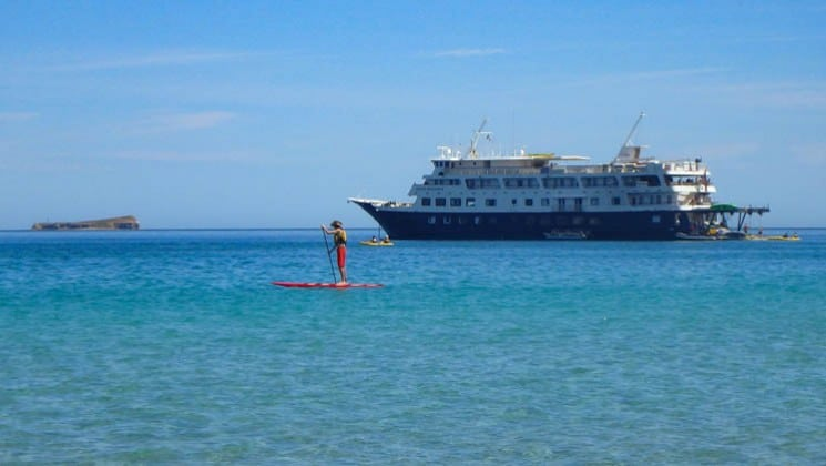 paddleboarder off port side of baja's bounty small cruise ship